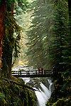 Bridge over Sol Duc Falls, Olympic National Park, Washignton