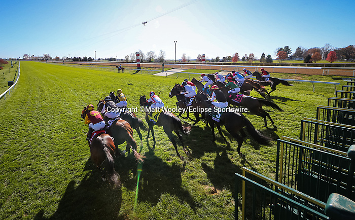 Glass Slippers (#6, Dream Ahead), Tom Eaves up, wins the BC Turf Sprint at Keeneland 11.07.20. Winning Owner: Bearstone Stud Limited, Winning Trainer: Kevin A. Ryan
