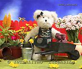 Xavier, CUTE ANIMALS, teddies, photos, SPCHTEDDIES76,#ac#