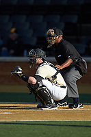 Wake Forest Demon Deacons catcher Shane Muntz (11) sets a target as home plate umpire Gregory Street looks on during the game against the Liberty Flames at David F. Couch Ballpark on April 25, 2018 in  Winston-Salem, North Carolina.  The Demon Deacons defeated the Flames 8-7.  (Brian Westerholt/Four Seam Images)