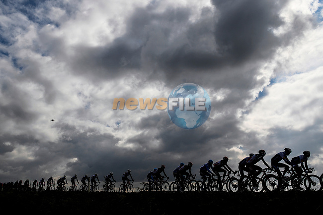 The peloton during Stage 13 of the 103rd edition of the Giro d'Italia 2020 running 192km from Cervia to Monselice, Italy. 16th October 2020.  <br /> Picture: LaPresse/Fabio Ferrari | Cyclefile<br /> <br /> All photos usage must carry mandatory copyright credit (© Cyclefile | LaPresse/Fabio Ferrari)