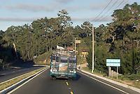 Guatemala, Landstrasse bei Guatemala-City