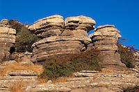 Spanien, Andalusien, Im Naturpark  El Torcal