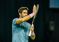 Rotterdam, The Netherlands, 12 Februari 2019, ABNAMRO World Tennis Tournament, Ahoy, first round singles: Fernando Verdasco (ESP)<br /> Photo: www.tennisimages.com/Henk Koster