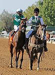 """October 10,, 2021: #7 Averly Jane and jockey Tyler Gaffalione win the Indian Summer Stakes Presented by Keeneland Select (Listed) """"Win and You're In Breeders' Cup Juvenile Turf Sprint"""" for trainer Wesley Ward and owner Hat Creek Racing at Keeneland Racecourse in Lexington, KY on October 10, 2021.  Candice Chavez/ESW/CSM"""
