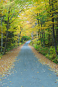 Dolly Copp Road in Randolph, New Hampshire USA during the autumn months.