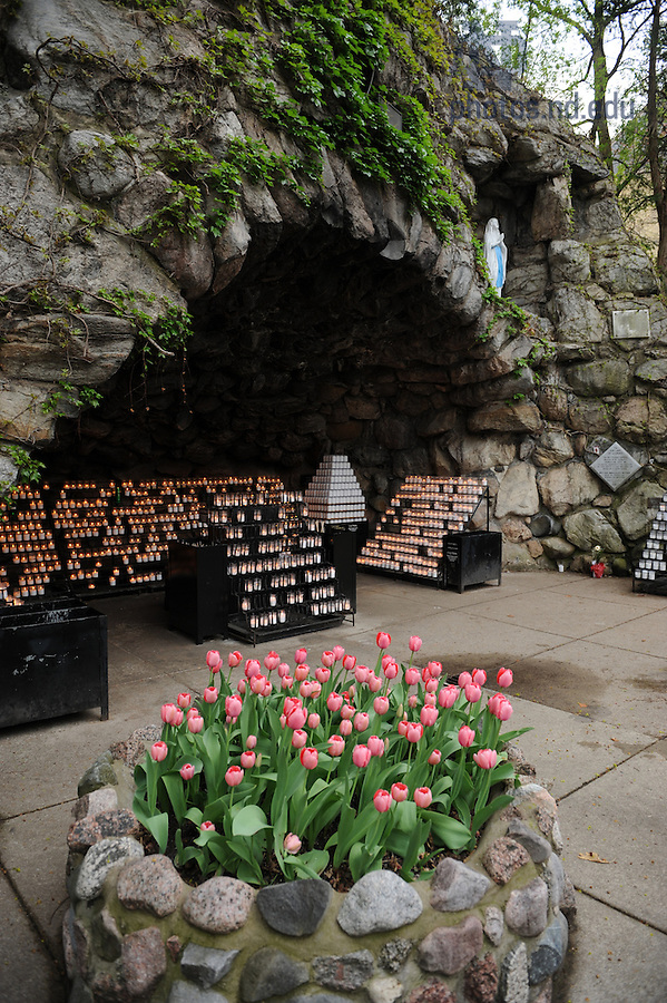Grotto in spring with tulips