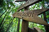 Randonnée au Pic Malaoui, Monts Koghis, Nouvelle-Calédonie