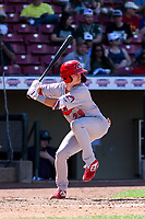 Peoria Chiefs first baseman Josh Shaw (29) at bat during a Midwest League game against the Cedar Rapids Kernels on May 26, 2019 at Perfect Game Field in Cedar Rapids, Iowa. Cedar Rapids defeated Peoria 14-1. (Brad Krause/Four Seam Images)