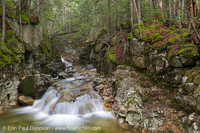 Beecher Cascade in the New Hampshire White Mountains during the spring months. Named for Henry Ward Beecher, this small cascade is located just below Pearl Cascades on Crawford Brook, near Avalon Path. Henry Ward Beecher was the first pastor of the Plymouth Church in Brooklyn, New York.