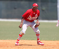 March 19, 2010:  Shortstop Cesar Valera of the St. Louis Cardinals organization during Spring Training at the Roger Dean Stadium Complex in Jupiter, FL.  Photo By Mike Janes/Four Seam Images