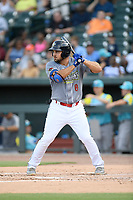 First baseman Chase Chambers (8) of the Columbia Fireflies, playing as the Chicharrones de Columbia, bats in a game against the Charleston RiverDogs on Friday, July 12, 2019 at Segra Park in Columbia, South Carolina. The RiverDogs won, 4-3, in 10 innings. (Tom Priddy/Four Seam Images)
