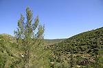 Nahal Sorek in Jerusalem mountains