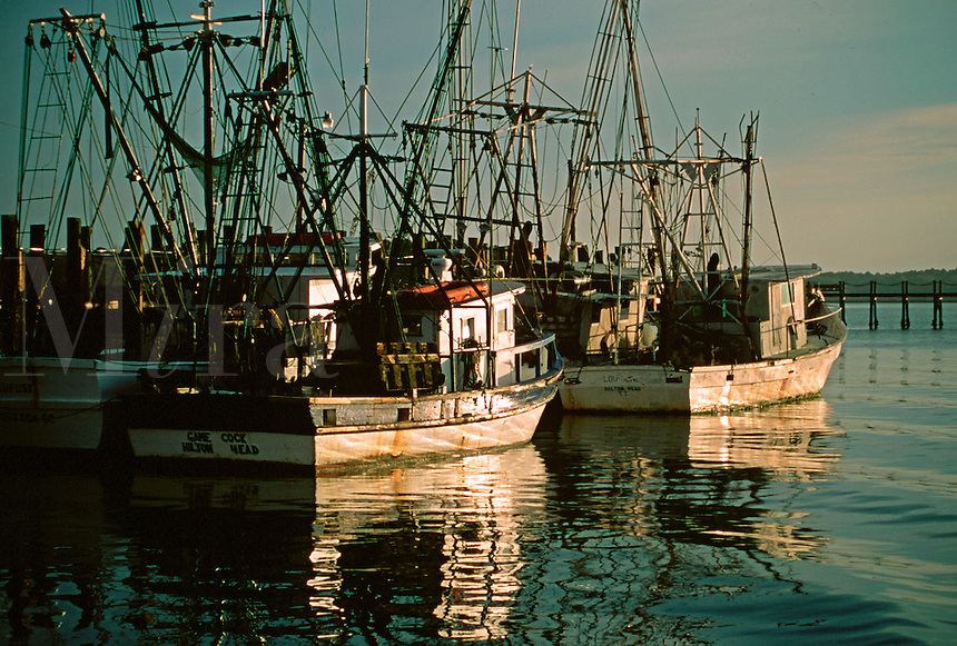 Fishing boats in harbor. South Carolina