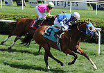 16 August 2008: Fiona Freud wins a race on the undercard before the Alabama Stakes at Saratoga Race Course in Saratoga Springs, New York.
