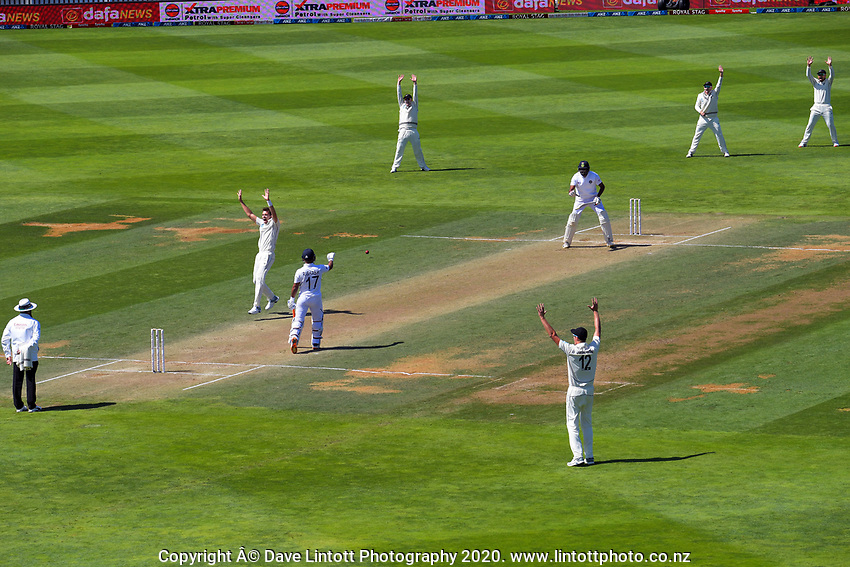 NZ's Tim Southee appeals during day four of the International Test Cricket match between the New Zealand Black Caps and India at the Basin Reserve in Wellington, New Zealand on Monday, 24 February 2020. Photo: Dave Lintott / lintottphoto.co.nz