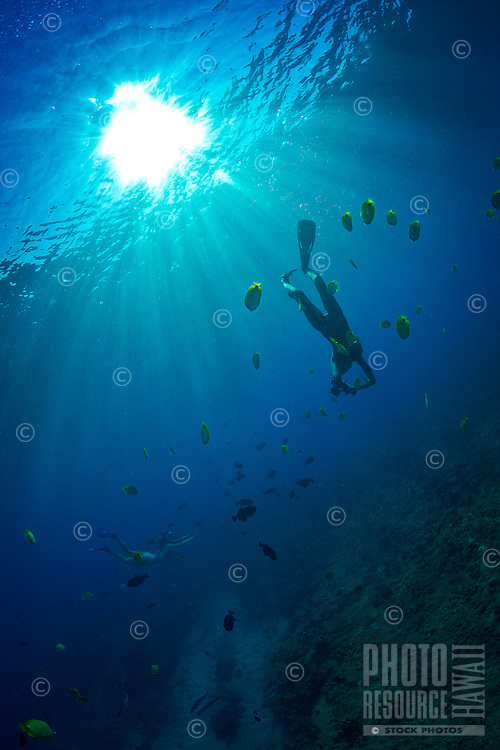 Being one with the ocean: Sunrays beam over a fellow snorkeler and tropical fish along a reef in Hawai'i.