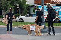 A dog attends a march against police brutality and racism in Washington, D.C. on Saturday, June 6, 2020.<br /> Credit: Amanda Andrade-Rhoades / CNP/AdMedia
