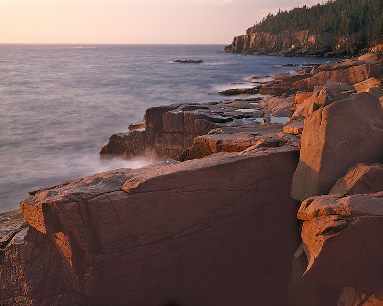 Morning glow on rocky shore below Otter Cliffs; Acadia National Park, ME