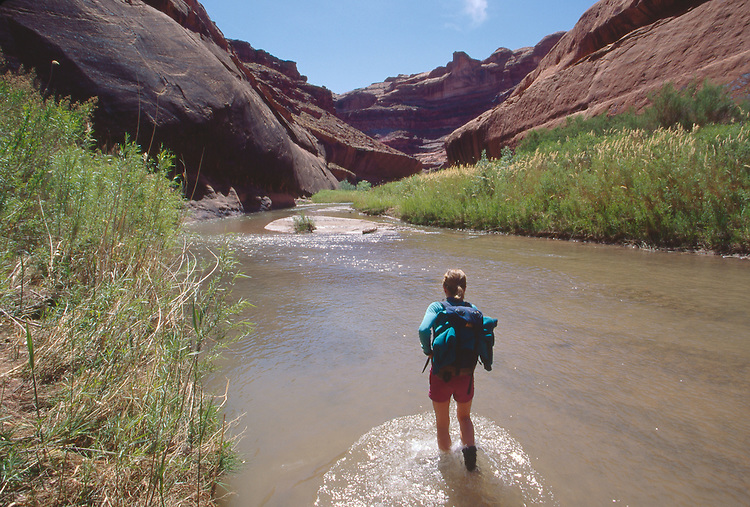 Utah, Coyote Gulch, Escalante River, Canyon, Glen Canyon National Recreation Area, Utah, Woman wading, Maggie Coon, model released,.