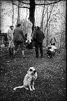 Europe/France/Auvergne/15/Cantal/Massif du Puy Mary/ Mandailles ; Jour de la Fète du Cochon ou Tuade chez Daniel Reygade -Parc Naturel Régional des Volcans d'Auvergne
