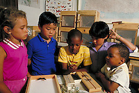 ELEMENTARY SCHOOL STUDENTS LOOKING AT BUTTERFLY SPECIMENS. STUDENTS LOOKING AT BUTTERFLY SPECIMENS. VALLEJO CALIFORNIA USA.