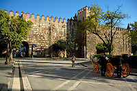 Horsedrawn cart waiting by stone wall in the Alcazar of Seville, Andalusia, Spain.