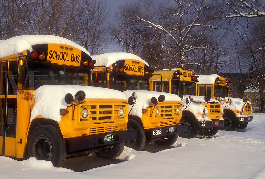 school bus, winter, New England, School buses parked in a parking lot in the snow in winter.