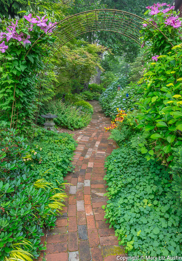 Vashon Island, Washington: Summer perennial shade garden with brick pathway and clematis trellis