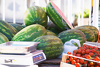 Water melons and tomatoes. In the fruit and vegetable market in the harbour. Luka Gruz harbour. Dubrovnik, new city. Dalmatian Coast, Croatia, Europe.