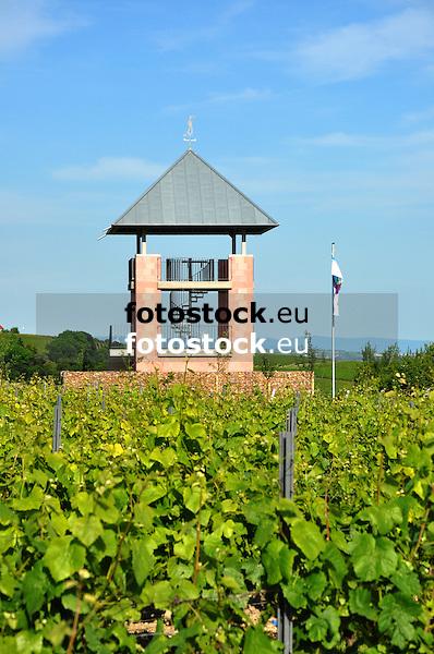 Weinbergsturm von Ensheim
