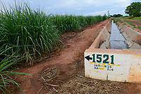 ZAMBIA, Mazabuka, large farm of Zambia Sugar, sugarcane and irrigation canal