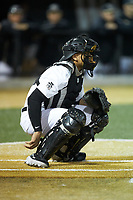 Wake Forest Demon Deacons catcher Christian Long (19) on defense against the Sacred Heart Pioneers at David F. Couch Ballpark on February 15, 2019 in  Winston-Salem, North Carolina.  The Demon Deacons defeated the Pioneers 14-1. (Brian Westerholt/Four Seam Images)