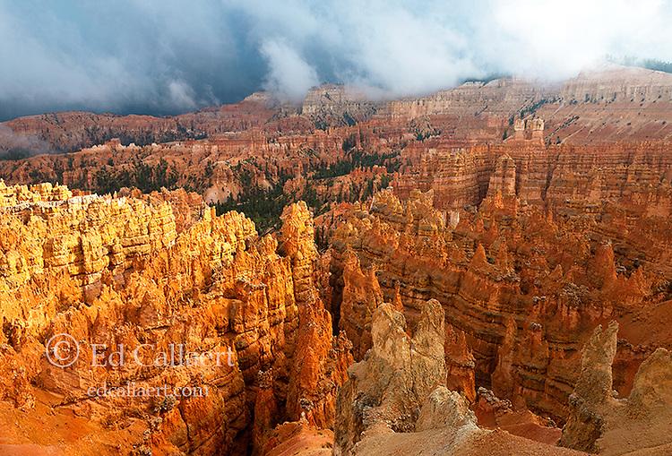 Rain Clouds, Wall Street,  Bryce Canyon National Park, Utah