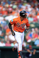Baltimore Orioles right fielder Henry Urrutia (51) runs to first base during a Spring Training game against the Minnesota Twins on March 7, 2016 at Ed Smith Stadium in Sarasota, Florida.  Minnesota defeated Baltimore 3-0.  (Mike Janes/Four Seam Images)