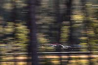#32 UNITED AUTOSPORTS - Oreca 07 - Gibson: Nicolas Jamin - Jonathan Aberdein - Manuel Maldonado, 24 Hours of Le Mans , Test Day, Circuit des 24 Heures, Le Mans, Pays da Loire, France
