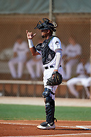 GCL Marlins catcher Luis Arcaya (8) during a Gulf Coast League game against the GCL Astros on August 8, 2019 at the Roger Dean Chevrolet Stadium Complex in Jupiter, Florida.  GCL Astros defeated GCL Marlins 4-2.  (Mike Janes/Four Seam Images)