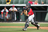 Kannapolis Intimidators catcher Brett Austin (20) fields a throw in front of home plate during the game against the Lakewood BlueClaws at CMC-Northeast Stadium on May 17, 2015 in Kannapolis, North Carolina.  The Intimidators defeated the BlueClaws 4-1.  (Brian Westerholt/Four Seam Images)