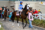February 21, 2015: Cougar Ride with Shaun Bridgmohan up in the Mineshaft Handicap at the New Orleans Fairgrounds Risen Star Stakes Day. Steve Dalmado/ESW/CSM
