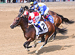 Forever Unbridled (no. 4), ridden by Joel Rosario and trained by Dallas Stewart, wins the 70th running of the grade 1 Personal Ensign Stakes for fillies and mares three years old and upward on August 26, 2017 at Saratoga Race Course in Saratoga Springs, New York. (Bob Mayberger/Eclipse Sportswire)