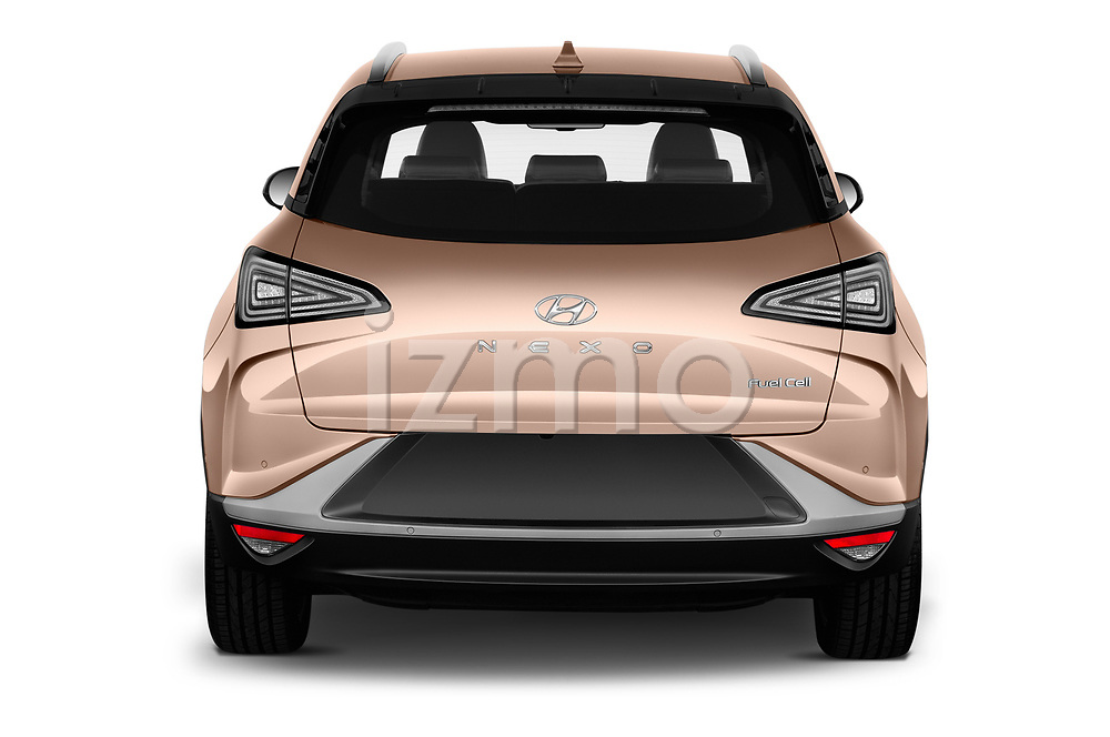 Straight rear view of 2019 Hyundai Nexo Limited 5 Door SUV Rear View  stock images