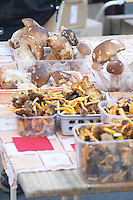 Mushrooms (porcini or cepes and chanterelles) for sale at a market stall at the market in Bergerac Dordogne France