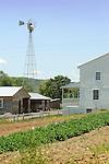 Amish farm, garden and windmill.