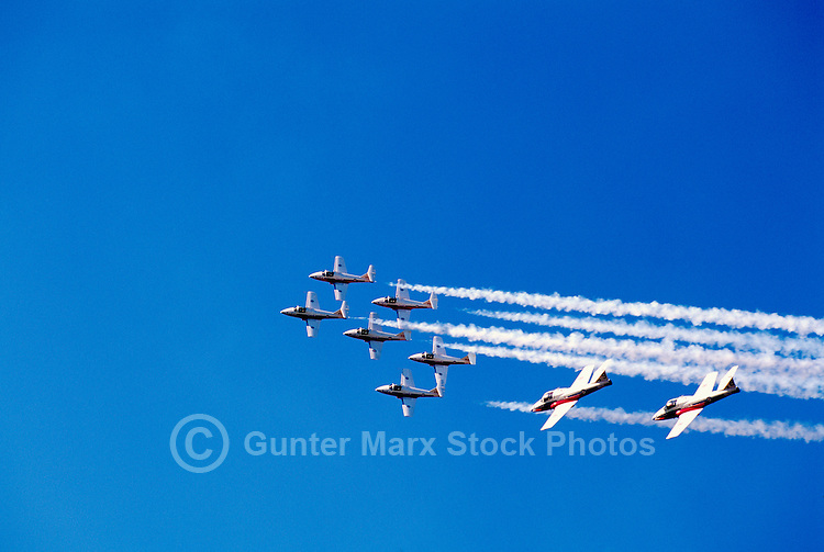 Canadian Forces Snowbirds flying in Close Formation in Sky with Smoke - at Abbotsford International Airshow, BC, British Columbia, Canada