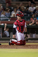 Scottsdale Scorpions catcher Mark Kolozsvary (98), of the Cincinnati Reds organization, during an Arizona Fall League game against the Salt River Rafters at Scottsdale Stadium on October 12, 2018 in Scottsdale, Arizona. Scottsdale defeated Salt River 6-2. (Zachary Lucy/Four Seam Images)