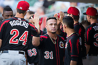 Oswaldo Arcia (31) of the Rochester Red Wings high fives teammates after hitting a home run against the Charlotte Knights at BB&T BallPark on August 8, 2015 in Charlotte, North Carolina.  The Red Wings defeated the Knights 3-0.  (Brian Westerholt/Four Seam Images)