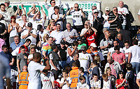 Pictured: Swansea supporters.<br /> Sunday 19 May 2013<br /> Re: Barclay's Premier League, Swansea City FC v Fulham at the Liberty Stadium, south Wales.