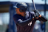 New York Yankees Rashad Crawford (25) during a Minor League Spring Training game against the Detroit Tigers on March 21, 2018 at the New York Yankees Minor League Complex in Tampa, Florida.  (Mike Janes/Four Seam Images)