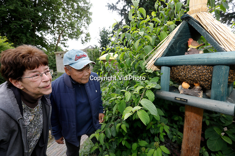 Foto: VidiPhoto<br /> <br /> VALBURG – Tuinvogels laten het exclusieve vogelhuisje van het echtpaar Knoester in Valburg (gem. Overbetuwe) links liggen, maar sinds dinsdagmiddag zijn er toch bewoners: een bijenvolk met duizenden honingbijen. De Knoesters werden gealarmeerd door de alerte kunstvogel in het huisje dat begint te tsjilpen zodra er iets voor de sensor langs vliegt. Het plastic vogeltje zong plots de longen uit zijn lijf. Toen Frans en Marion Knoester gingen kijken wat er een de hand was, ontdekten zij hun nieuwe buren. Het vogelhuisje deed de bijenzwerm ongetwijfeld denken aan de bijenkast van waaruit ze vertrokken waren, want er werd geen poging ondernomen om te vertrekken. Inmiddels is een imker in de buurt bereid gevonden om de zwerm binnenkort te komen scheppen.