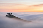 "Pictured: A hilltop resembles a floating island on a sea of fog.   Crowned by a few pine trees, Colmer's Hill, near Bridport, Dorset, is the only land to rise above the fog for miles around.<br /> <br /> Photographer Mark Andreas Jones captured the evocative shots of the 417ft high hill as the area was engulfed by mist and frost on Sunday morning.   The 49 year old from Portsmouth, Hants, said: ""This is the best cloud inversion I have ever seen at this location and, coupled with the beautiful sunrise, it made for a very special morning. SEE OUR COPY FOR DETAILS<br /> <br /> Please byline: Mark Andreas Jones/Solent News<br /> <br /> © Mark Andreas Jones/Solent News & Photo Agency<br /> UK +44 (0) 2380 458800"